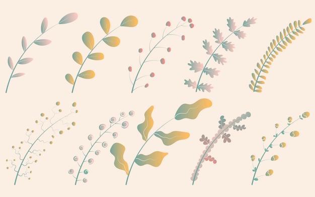 Ilustracja wektorowa zestaw dziesięciu uroczych gałęzi gradientu z liśćmi żółtymi i zielonymi o różnych kształtach.
