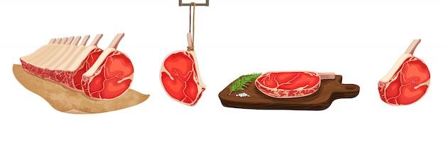 Ilustracja wektorowa żywności. zestaw stylizowane surowego mięsa.