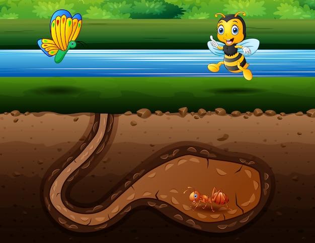 Ilustracja wielu owadów żyjących na brzegu rzeki