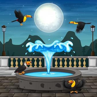 Ilustracja wielu tukanów przy fontannie