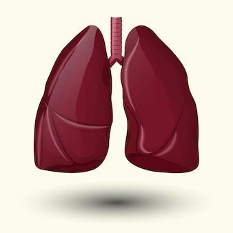 Ilustracja zdrowe płuca