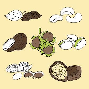 Ilustracja - zestaw ikon orzechów