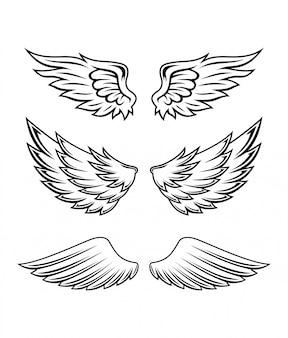 Ilustracja zestaw kolekcja skrzydła