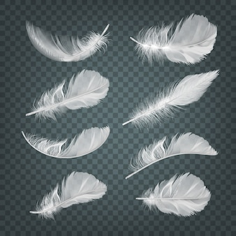 Ilustracja zestaw na białym tle realistyczne spadające białe puszyste kręcone pióra na przezroczystym tle
