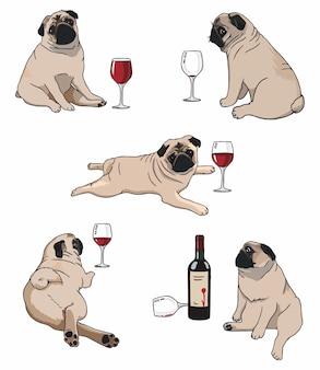Ilustracja zestawu mopsów w różnych pozach z winem
