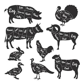 Ilustracje do sklepu mięsnego