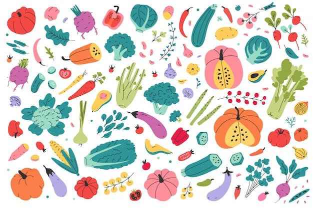 Ilustracje różnych rodzajów warzyw