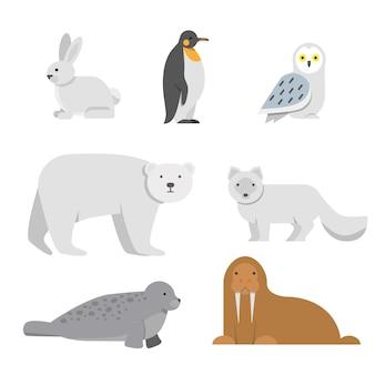 Ilustracje wektorowe arktycznych zwierząt śniegu