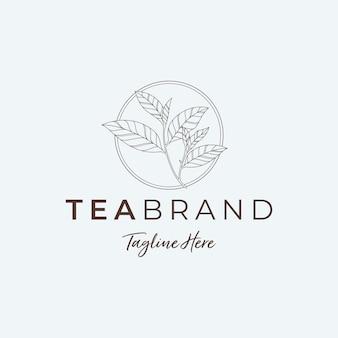 Ilustracje z logo minimalistycznego liścia herbaty