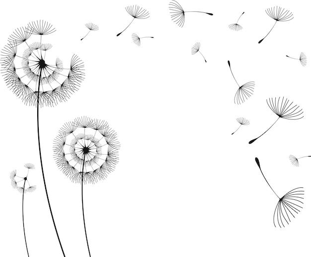 Ilustracji wektorowych kwiat mniszka lekarskiego