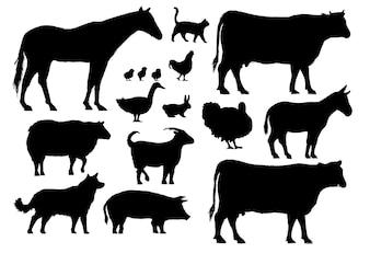 Ilustracyjny rysunek styl zwierzęta gospodarskie kolekcja