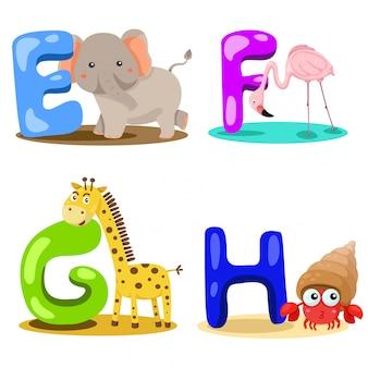 Ilustrator alfabet zwierząt list - e, f, g, h