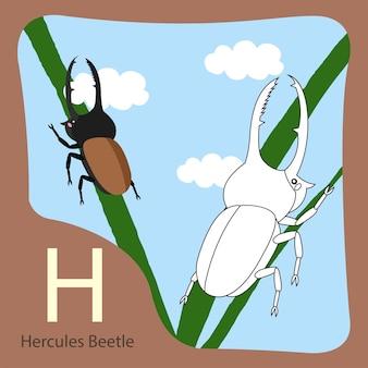 Ilustrator chrząszcza herkulesa izolowanego i kolorowania