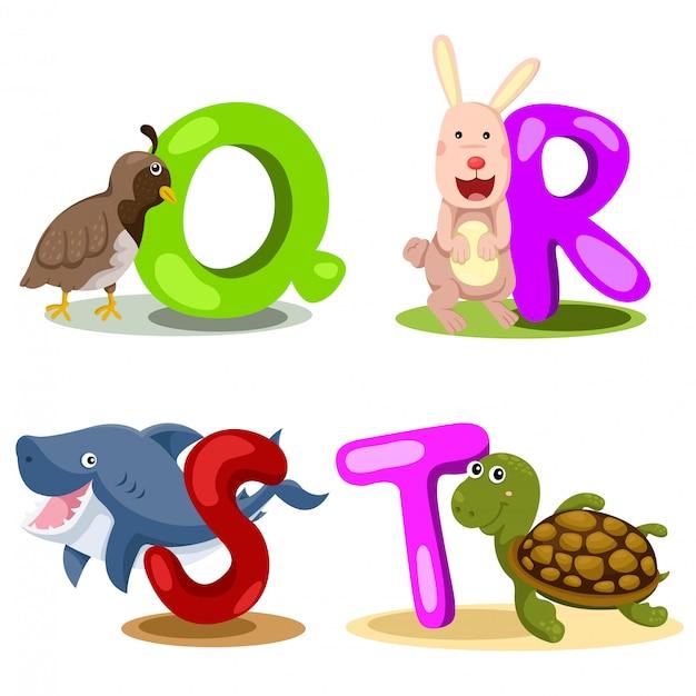 Ilustrator liter alfabetu zwierząt - q, r, s, t