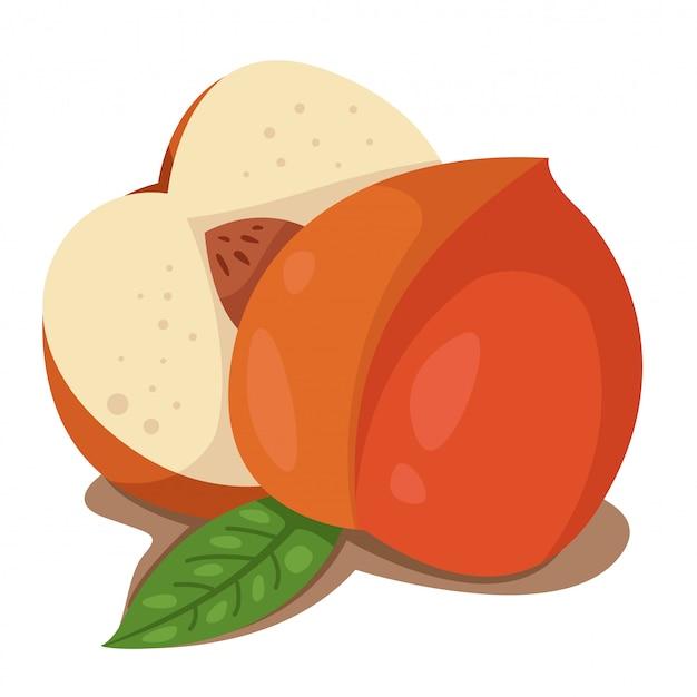 Ilustrator owoców brzoskwini