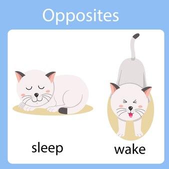 Ilustrator przeciwieństw snu i budzenia