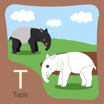 Ilustrator tapir izolowanych i barwiących