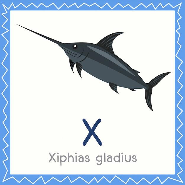 Ilustrator x dla zwierząt xiphias gladius