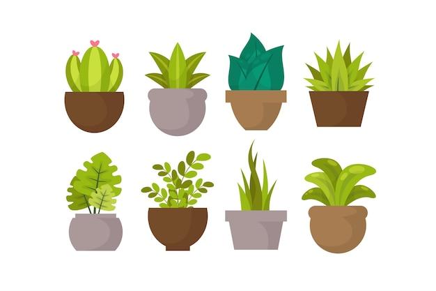 Ilustrowana kolekcja płaskich roślin doniczkowych