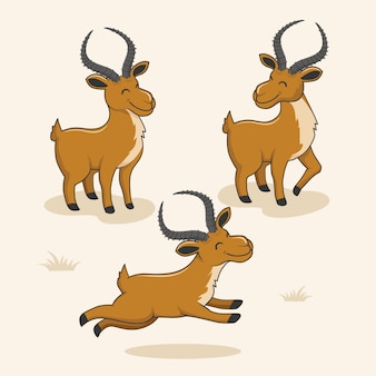 Impala animals cartoon