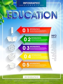 Infografika edukacji z kolorowymi elementami strzałek i ikon