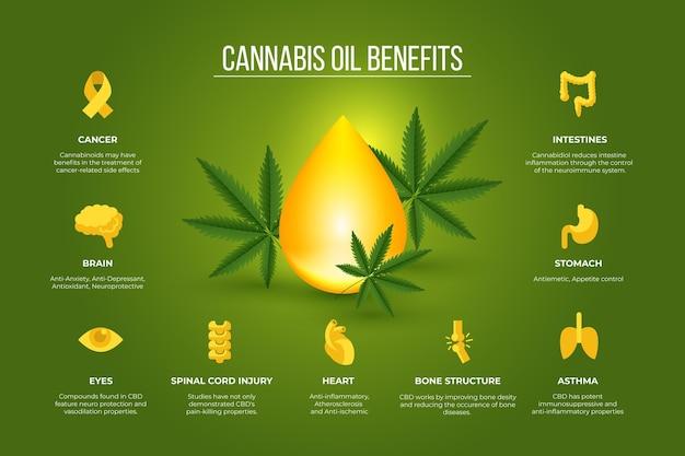 Infografika korzyści zdrowotnych oleju z konopi indyjskich
