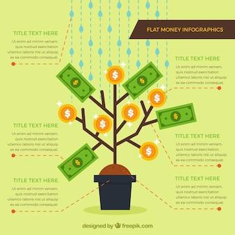 Infografika pieniądze roślina ozdobna