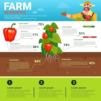 Infografika rolnicza przyjazna dla środowiska organiczna naturalna roślina warzywna wytwórnia produkcji rolnej