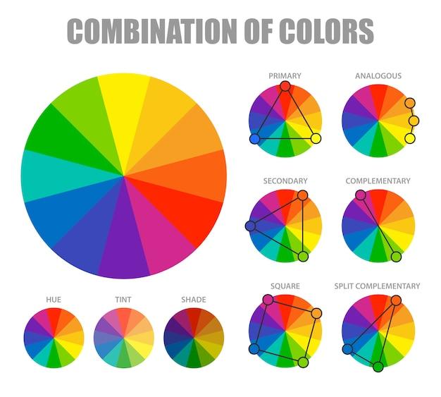 Infografika schemat kombinacji kolorów