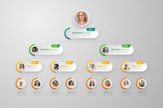 Infografika schematu organizacyjnego w stylu papieru ze zdjęciem
