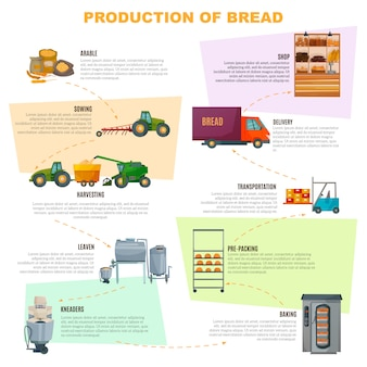 Infografiki etapów produkcji chleba