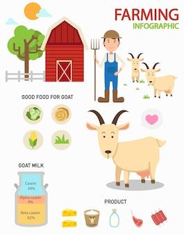 Infografiki farm kozy, ilustracja