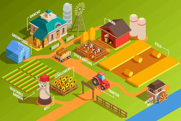 Infografiki farma izometryczny