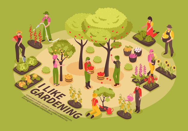 Infografiki izometryczne ogrodnictwo
