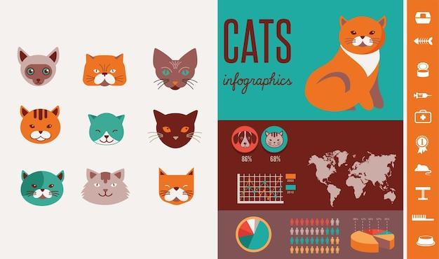 Infografiki kota z zestawem ikon