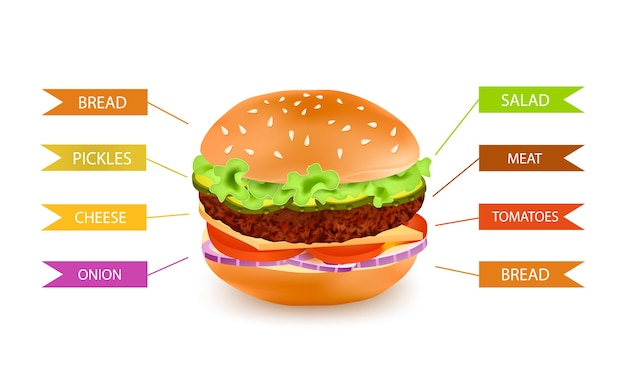 Infografiki napełniania hamburger fastfood