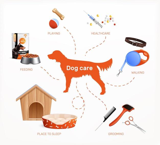 Infografiki opieki nad psem