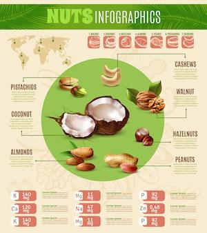 Infografiki realistyczne orzechy