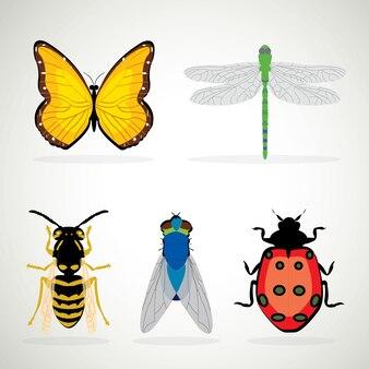 Insekt realistyczne barwił dekoracyjne ikony ustawiać z biedronka ślimaczka osą odizolowywającą