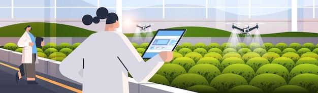 Inżynierowie kontrolujący drony rolnicze opryskiwacze quady helikoptery lecące do rozpylania nawozów chemicznych w szklarni innowacyjna technologia inteligentnego rolnictwa