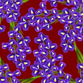Irysowy kwiat na czerwonym tle