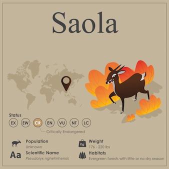 Isometric saola infographic