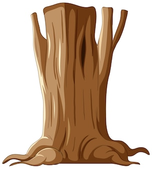 Izolowany pień i korzenie drzewa