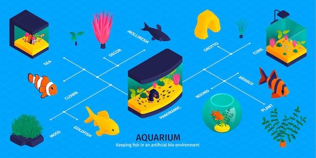 Izometryczna infografika akwarium ze schematem blokowym odizolowanych ryb, roślin wodnych i dekoracji z podpisami tekstowymi