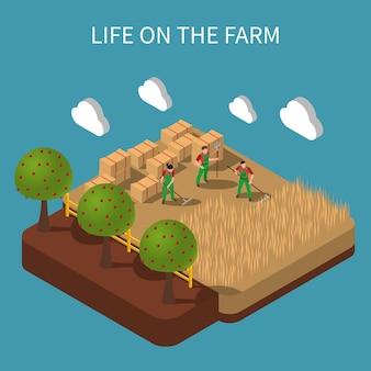 Izometryczna kompozycja życia na farmie z robotnikami rolniczymi zajmującymi się sianokosami na rustykalnym krajobrazie