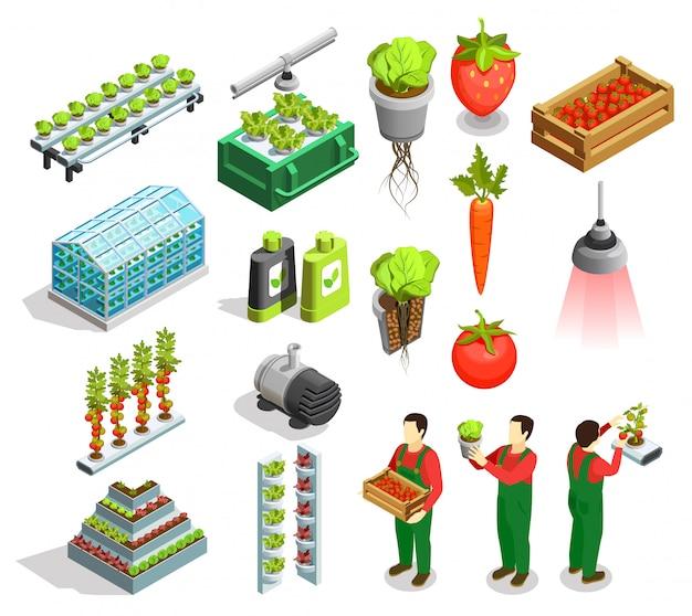Izometryczne ikony hydroponicznych i aeroponicznych