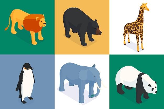Izometryczne kompozycje zoo egzotycznych zwierząt