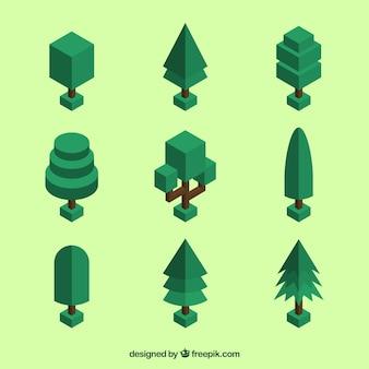 Izometryczny kolekcja drzewa