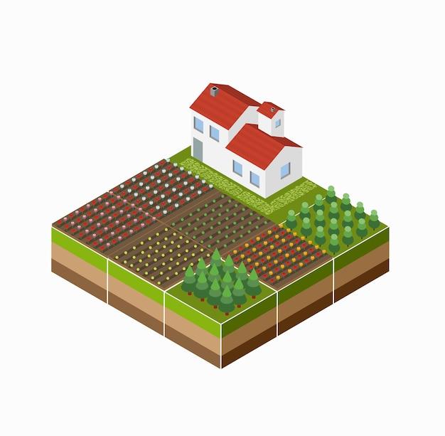 Izometryczny krajobraz wsi z farmą, uprawą, łóżkami.