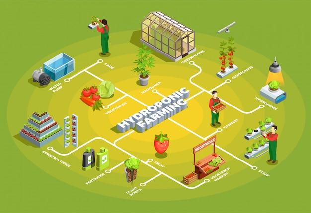 Izometryczny schemat blokowy dla rolnictwa hydroponicznego